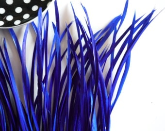 GOOSE BIOT FEATHERS, Electric  Blue  /  761