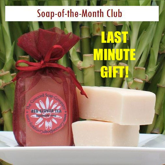 Handmade Soap-of-the-Month Club 12 Month DOUBLE YOUR FUN Subscription - soap club, monthly, membership, last minute gift, assorted scents