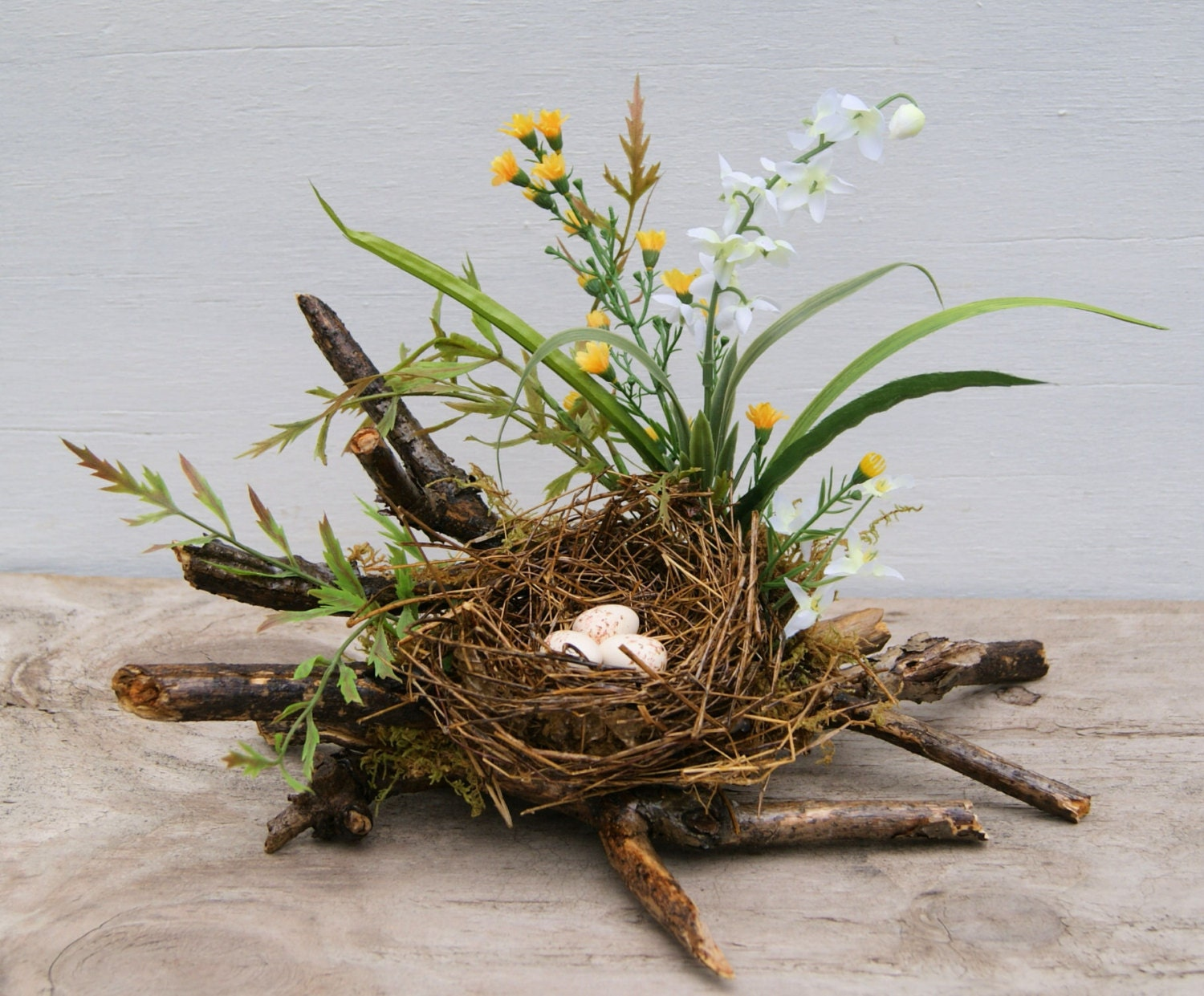 Bird Nest Spring Coffee Table Decor