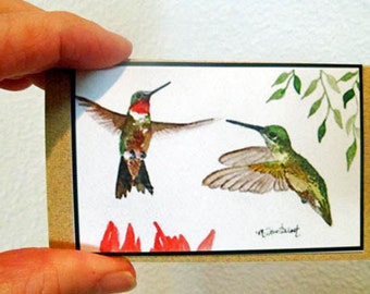 Small Gift Cards Of Four Different Hummingbirds In Watercolor Pack of 8 Blank Gift Card Set
