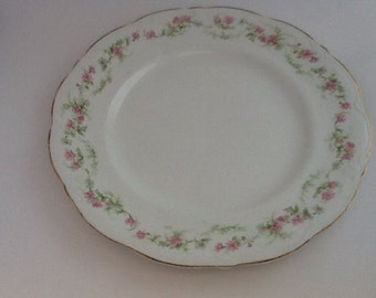 Alfred Meakin Vintage china plate