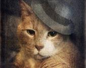 Anthropomorphic Art Ginger Cat Custom Pet Portrait Animal Photo Cat Hats Orange Cats Canadian Seller - 5x5 Art Print -  Vinnie Valentino