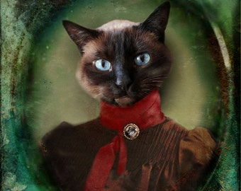 Siamese Cat Photo Animal Photography Pet Portrait Victorian Animal Cat Collage Gift for Cat Lovers Print -Young Lady of Shetland