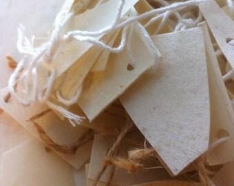 Parchment samples