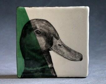 Hand Painted Drake Mallard Duck Portrait Wall Tile Leaf Green