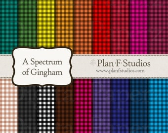 Gingham Spectrum Digital Paper Set - 18 JPG Images 12 Inches at 300dpi - Instant Download