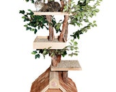 Mature (large) Cat Tree House