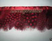 Guineafowl feather fringe red color 10 yards trim