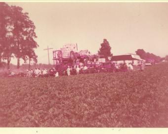 1956 Kodacolor Print Color Cotton Farm Harvest Field Vintage Photo Photograph