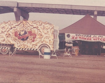 Schlitz Brewing Co Circus Parade Wagon On Display Next to Bar Tent 40 Horse Hitch Ad  Milwaukee 1973 Vintage Photo Snapshot Color Photograph