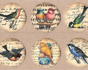 Stickers Song Birds on Text Background 18 pcs