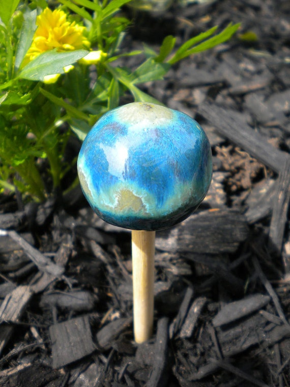 mini blue and green striped bebop mushroom