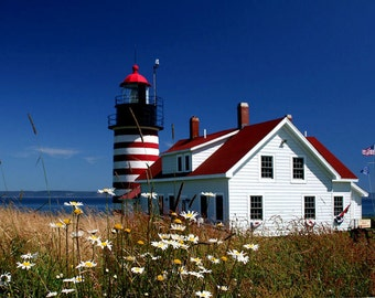West Quoddy Lighthouse, Daisies, Red, White, Blue, Fine Art Photography, 8X10 Mat, Nautical Wall Art, Ready to Frame