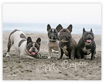 The Beach Gang - French Bulldog Cards - Set of 2 Cards