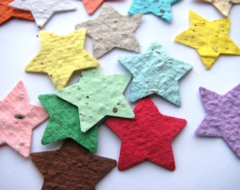 100 Plantable confetti STARS- choose from 16 colors- Wildflower blend