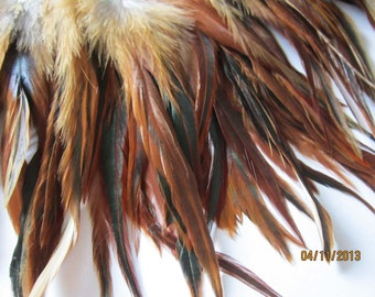 """1"""" strip of Strung Furnace Rooster Saddles FEATHERS Natural color -individual feathers about 7-8"""