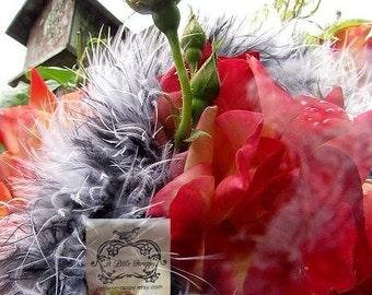 Black and White Mix Marabou Boa Feathers I