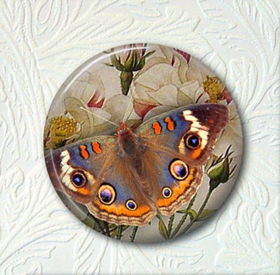Pocket Mirror  Butterfly  Buy 3 Mirrors Get 1 Mirror Free  202