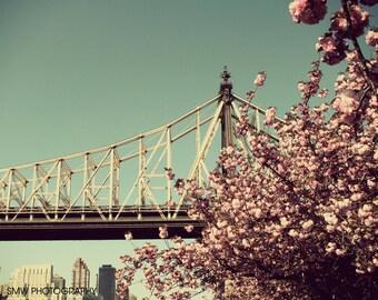 Queensboro Bridge and Cherry Blossoms