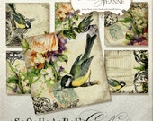 Digital Vintage Bird Cage Songbirds Collage Sheet 3 inch square AJR-BOO4-C music note rose stamp postcard yellow blue tag