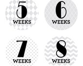 WEEKLY PREGNANCY Gray Patterned Weekly Stickers - Photo Memories - Track Your Growing Bump - Week 4 to Week 42 - Boy, Girl, Pea in the Pod