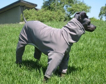 """UPF50 Sun Protection from the harmful Solar rays.. A Suit for American Hairless Terriers, Chinese Crested, Xolos Sizes from 10 - 22"""""""