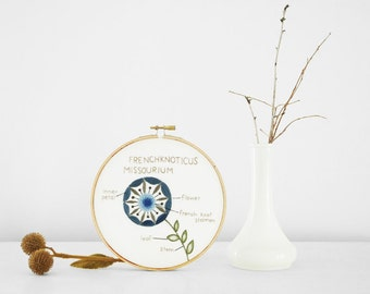 """Embroidered Botanical Diagram: Frenchknoticus Missourium. Embroidery Hoop Art Plant Diagram, Nature Study in 6"""" Hoop"""