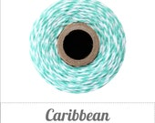 Caribbean - Teal and White Baker's Twine by The Twinery - 240 yard spool