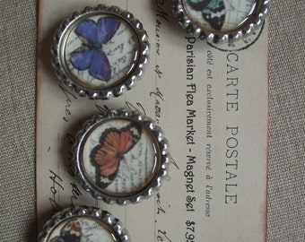 Magnet Set - Beautiful Butterflys