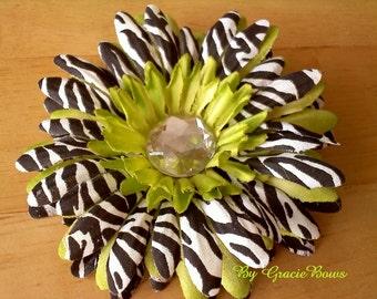 Apple Green Zebra Print Gerbera Daisy Hair Clip