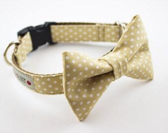 Oatmeal Dot Bow Tie Dog Collar