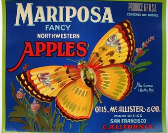 1920s Mariposa Butterfly Antique Original Apple San Fran McAlister Crate Label