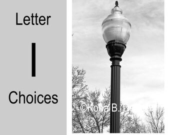 Letter I  -  Alphabet Photography  -  4x6 Photo Letter -  Unframed - Black and White or Sepia