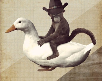 Monkey Riding a Duck