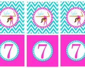 Gymnastics Birthday Cupcake Toppers Printable- CUSTOM to any color scheme (digital file)