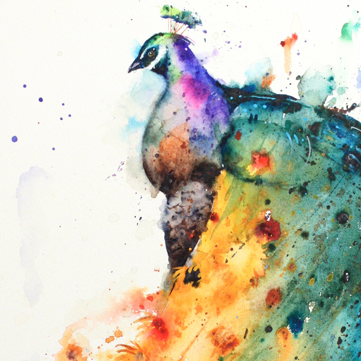 SUNFLOWER PEACOCK Watercolor Print by Dean by DeanCrouserArt