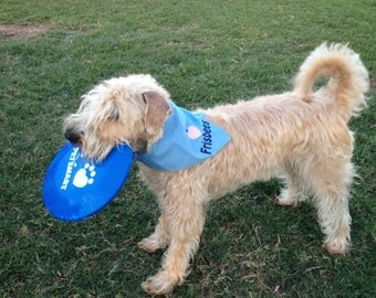 I Love Frisbees or I Love Frisbee Dog Bandana