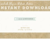 INSTANT DOWNLOAD - INSTAGRAM Flag Button - Blog or Website Social Icon - Vintage Swallowtail Flag Button