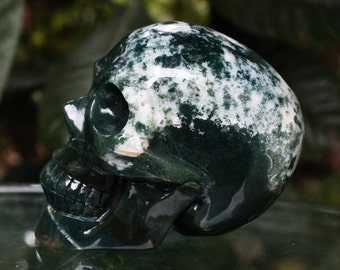"""LOVELY 3.8"""" Natural Green Agate Carved Realistic Crystal Skull 1.46 LB Healing C0262"""