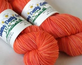 sw merino 'pink grapefruit' sock yarn