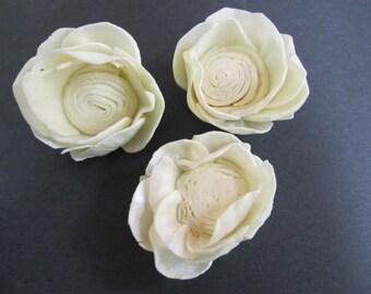 Sola Poppy Flowers --  SET of 12 -- Medium Size