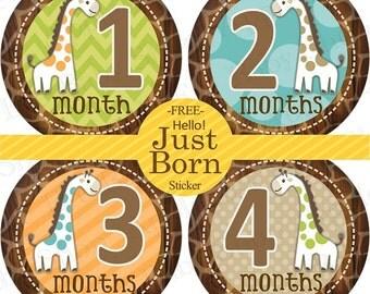Baby Month Milestone FREE Month Baby Sticker Baby Month Milestone Stickers Boys Bodysuit Stickers Baby Giraffes Brown Green Teal Orange 053B