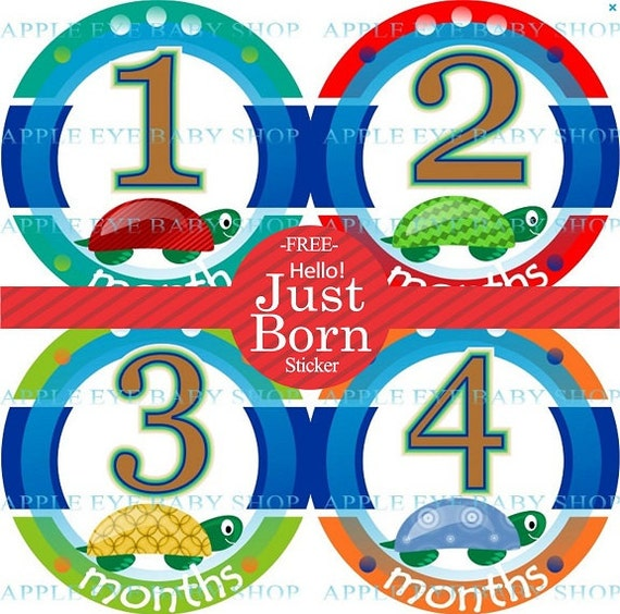 1Baby Monthly Stickers FREE Baby Month Milestone Sticker Baby Month Stickers Bodysuit Stickers Photo Props Baby Boy Turtles Blue Red