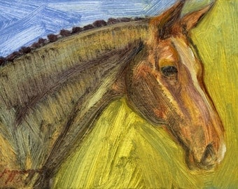 Horse portrait sketch, small oil painting on acid-free paper