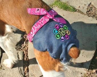 Retro Spankie (dog diaper)