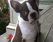 Boston Terrier Puppy Pillow Sepia