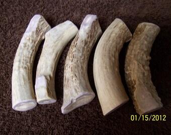 Deer Antler Dog Chew Bones
