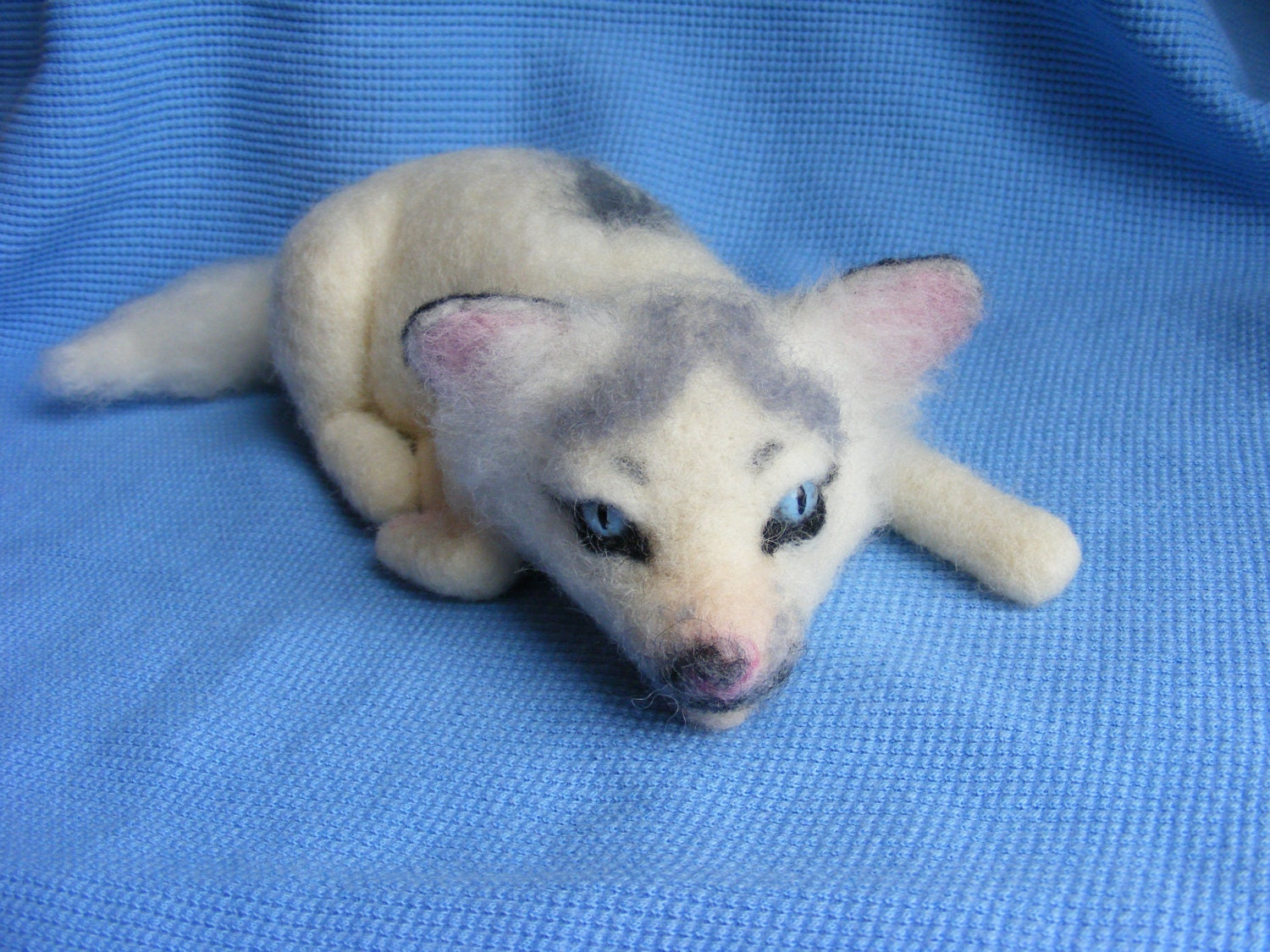 Baby Marble Fox | www.pixshark.com - Images Galleries With ...