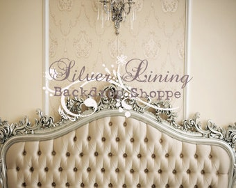 6ft x 4.5ft Vinyl Photography Backdrop / Elegant Headboard