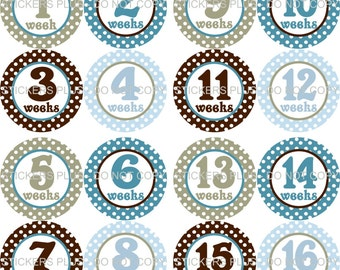 Baby Boy First Year Weekly Growth OnePiece Milestone Number Stickers Plus Gift Blue Brown Dots 1 - 52 Weeks FREE Priority Shipping Upgrade